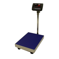 CNP Industrial Floor Scales | Scaletec South Africa